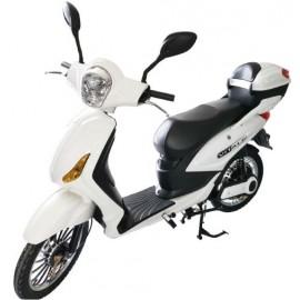 Scooter elettrico 250W